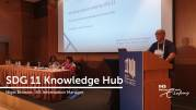 IHS_SDG 11 Knowledge Hub, Grey Literature, Nigel Browne